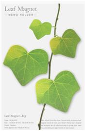 Leaf Magnet Ivy