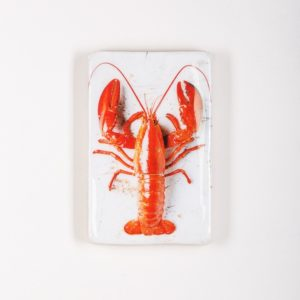interieur, winkel, binnenwerk, Leeuwarden, hout, fotografie, kunst, decoratie, vis, vissen, groente, kruiden, stigerwoods, merk, lobster